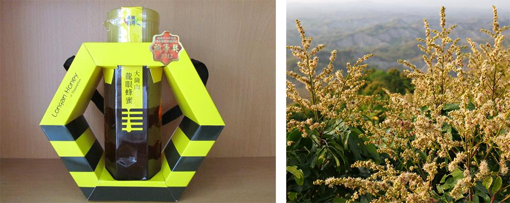 (左)大崗山龍眼花蜜品質優良。(照片提供/岡山農會)(右)春季正遇龍眼花開,整個大崗山都會佈滿黃色龍眼花。(照片提供/內門農會)