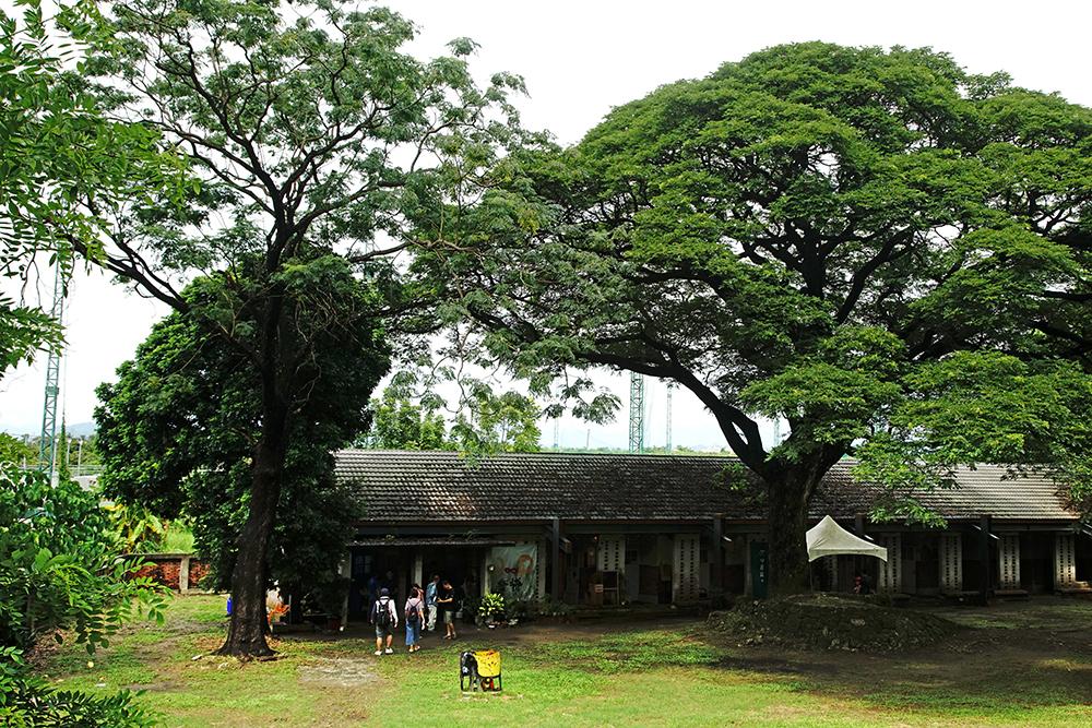 糖廠舊建築、老樹林,空間活化成為時光打造的藝術村。