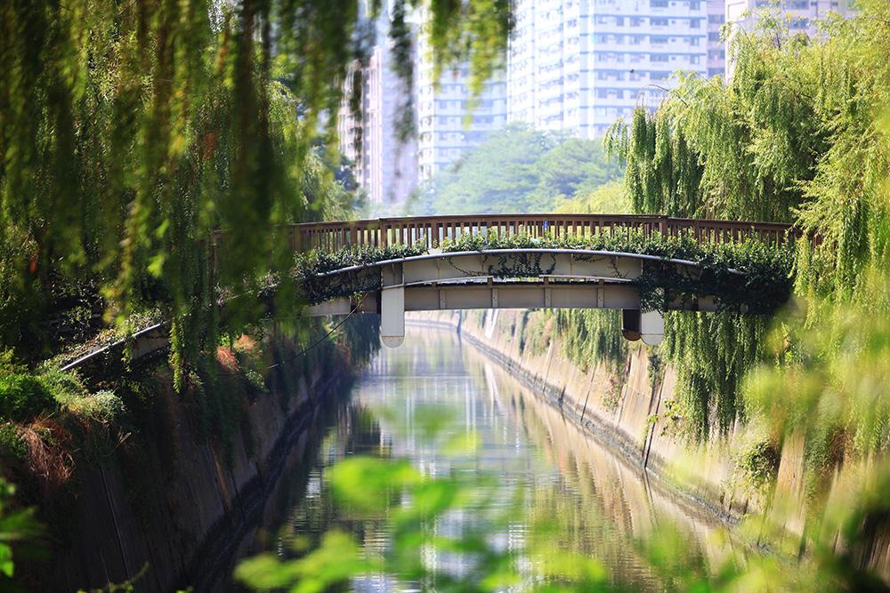 岡山河堤公園。