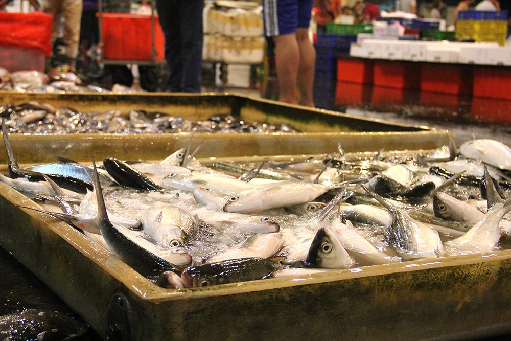 虱目魚是台灣人餐桌上常見的料理。