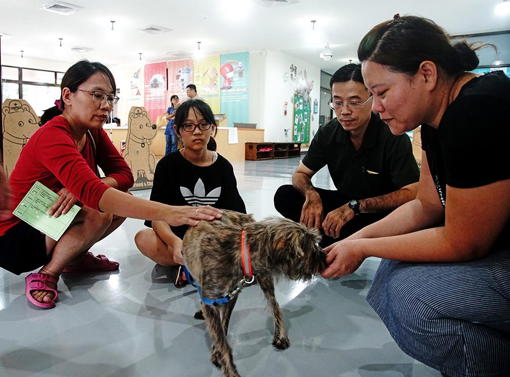 燕巢動物保護關愛園區是全臺唯一符合動保教育及動物五大自由的流浪動物收容場域。