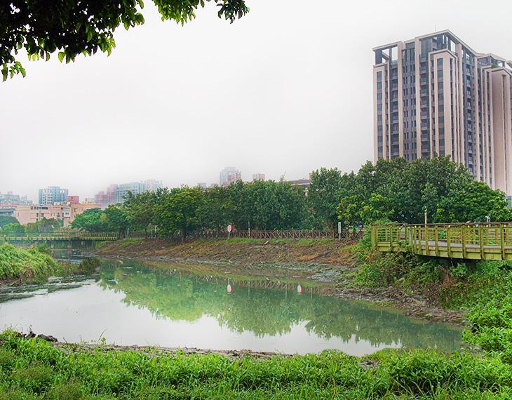仁武區九番埤濕地。