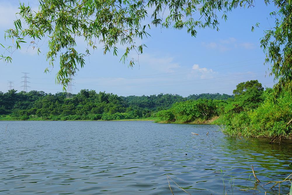 觀音湖。(攝影╱Bill Hwang)