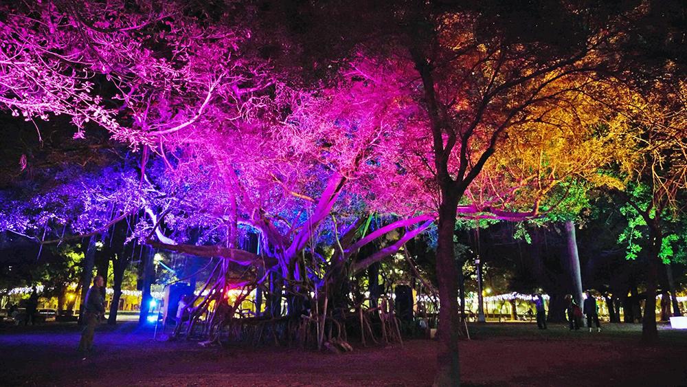 「一畝光蔭」雷射光秀就在陪伴中央公園的老榕樹下,目眩神迷。(照片提供/高雄市政府經發局)