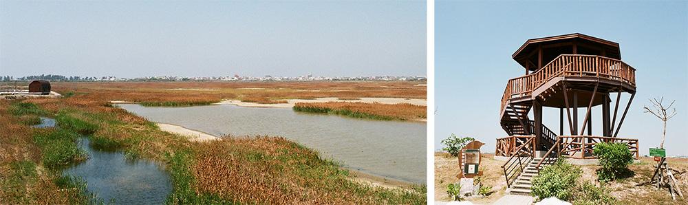 左:溼地風景。右:賞鳥樓。(攝影/畝嘰斗)