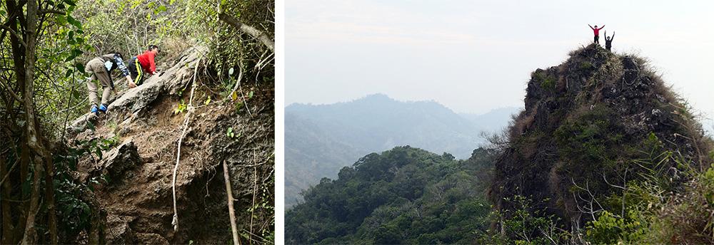 雞冠山自然生態步道(攝影/謝欣珈)