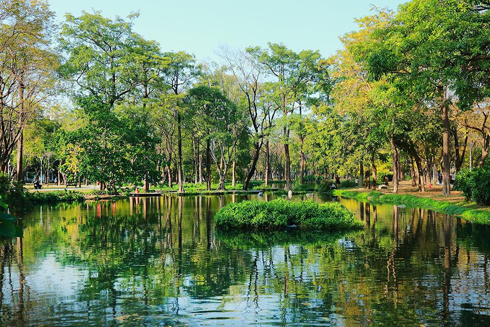 綠色映著水面,沉浸在大自然之中,美景如畫般。(攝影/Carter)