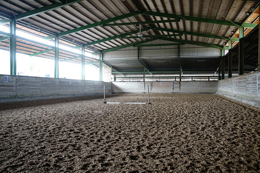 澳登堡馬術指導中心的室內騎乘場,依照世界FEI國際馬術總會場地規格,使用石英砂加入不織布,讓馬匹踩踏更安全。(攝影/曾信耀)