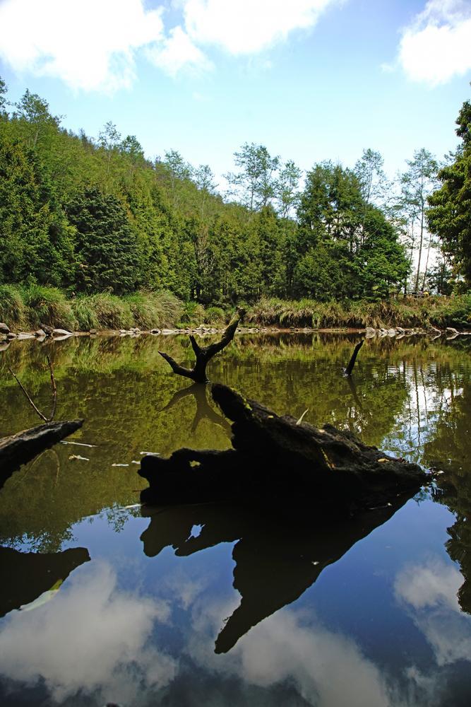 被形容是天堂入口的天池,藍天綠樹倒映池心,果然有世外桃源的悠然境界。(攝影/曾信耀)