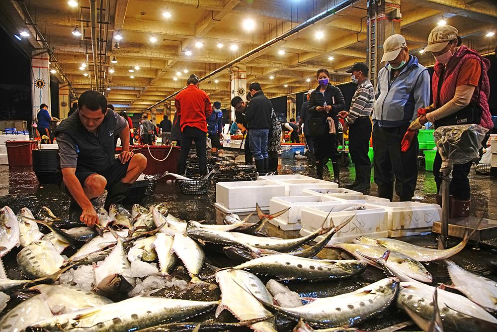 前鎮魚市場是大盤商的分銷地,現場可以看到許多攤販、廚師來挑選海鮮。(攝影/曾信耀)