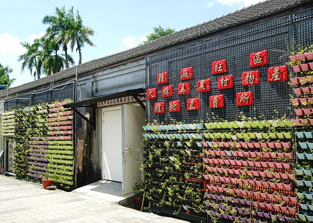 大旗美農村體驗物產直賣所外設置大面積植栽牆,不只觀賞及降溫,可食用的植物也是食農教育的一環。(攝影/曾信耀)