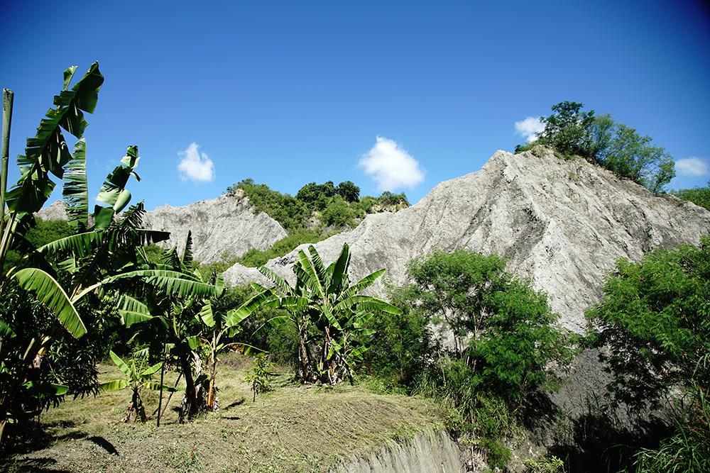 田寮人順應自然環境生存的智慧,利用山溝地種植作物。(攝影/曾信耀)