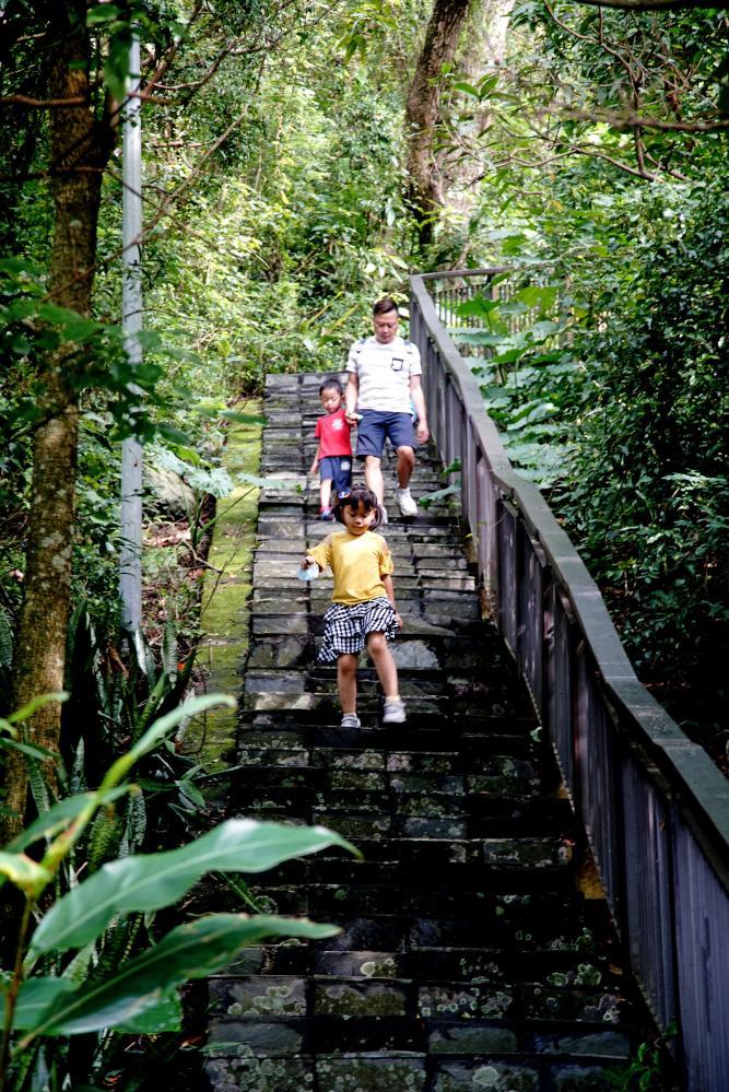 賞蝶步道周邊林相、生態豐富。(攝影/曾信耀)