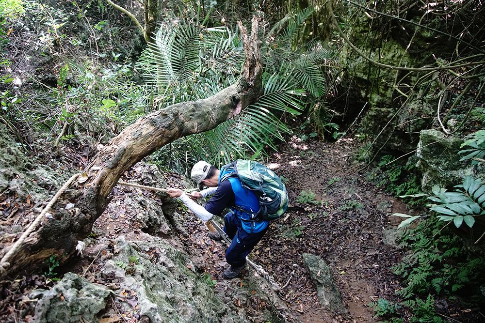 巡查員不只要有好體力,應付各種地形的登山能力,還得對壽山蜘蛛網般的大小路徑瞭若指掌。(攝影/曾信耀)