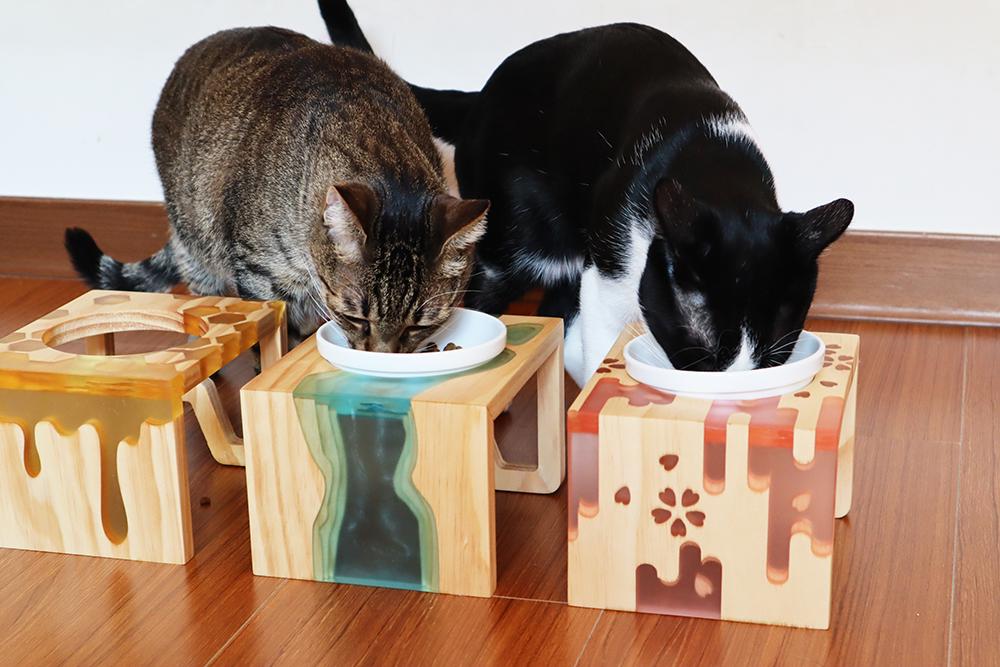 Petart樹脂寵物餐桌是硬印首款商品,從設計、打樣、開發、生產、募資、量產、包裝、出貨一條龍,都在M.ZONE完成。(攝影/曾信耀)