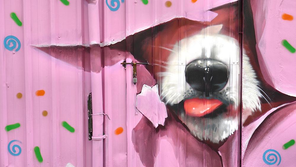 以「狗」為彩繪主題的「旺巷福弄」。(圖片提供/苓雅區公所)