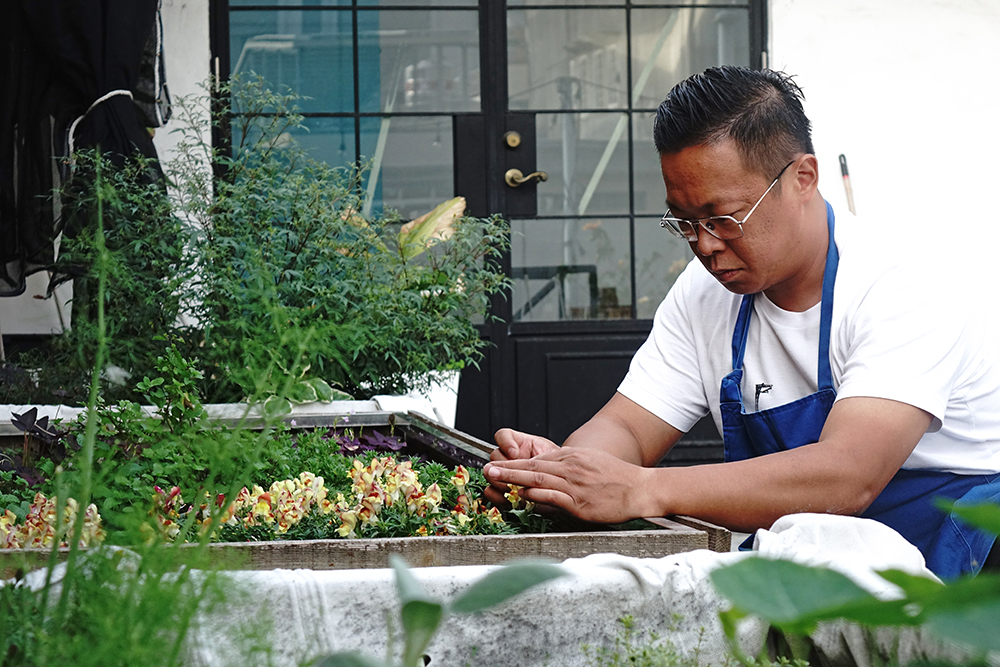 挑食餐酒館屋頂天台香草園,是蔡易達和伙伴們的秘密基地。(攝影/曾信耀)