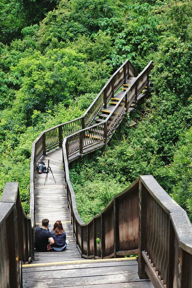 位於茂林部落裡的龍頭山步道,近來成為許多網友拍照打卡的熱門景點。(攝影/曾信耀)