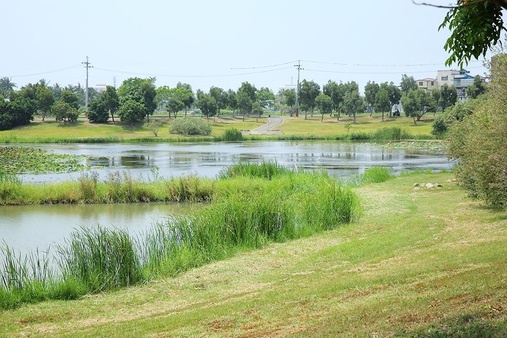 岡山滯洪池面積近60公頃,有效分擔典寶溪和大寮排水的通洪量。(攝影/Carter)