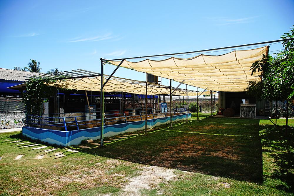 水流莊牧場位於橋頭東林里,民國79年開業,迄今正好邁入30個年頭。(攝影/曾信耀)