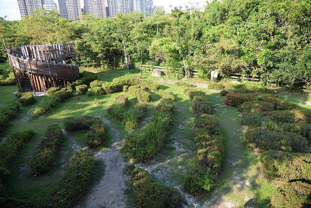 濃密的城市森林迷宮。